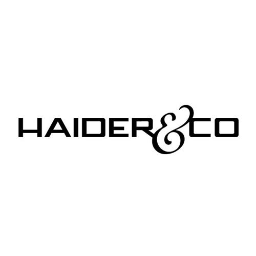 Haider und Co. Bau